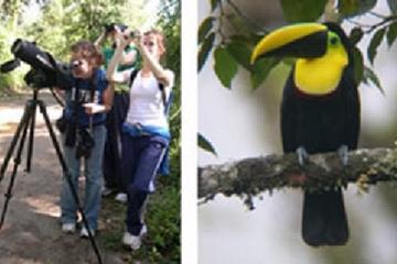 2 Days Bird Watching Tour from Quito