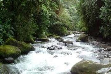 Private 2-Day Mindo Cloud Forest from...