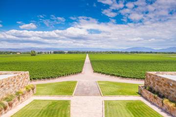 Excursão vinícola particular por...