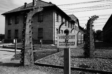 Day Trip to Auschwitz-Birkenau Memorial from Krakow