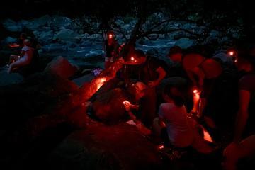 El Yunque Rainforest Twilight Nature Walk