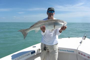 Naples Eco Tour and Backwater Fishing