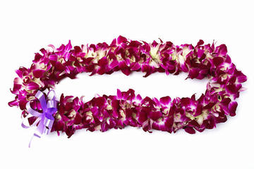 Lei d'orchidée de luxe