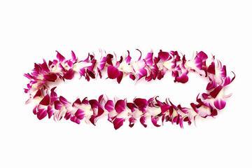 Lei d'orchidée