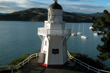 Akaroa Return Shuttle from Christchurch