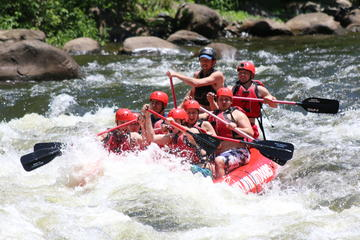 Day Trip Upper Pigeon River Rafting Trip near Hartford, Tennessee