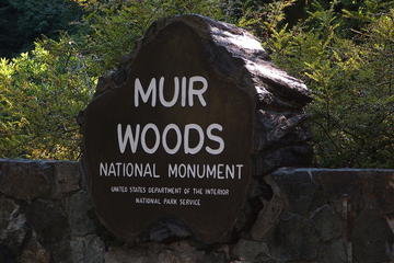 Muir Woods, Sausalito and Tiburon Day...