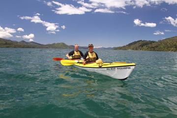 Half day Guided Sea Kayak Tour from...