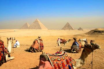 Private Camel Ride At Giza Pyramid For 2 Hours