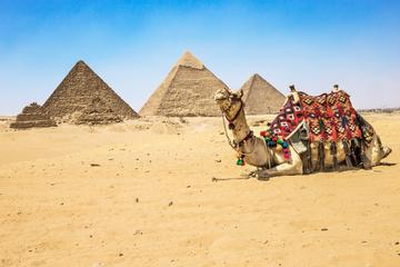 Private Half-Day Tour: Giza Pyramids and Sphinx by Camel or Horse