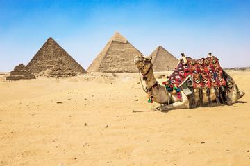 Recorrido de medio día privado: las pirámides de Guiza y la Esfinge...