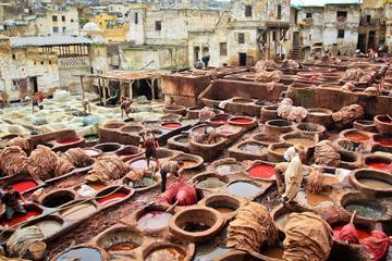 Visita privada: Visita guiada a pie en Fez