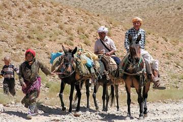 Visite privée: excursion au massif du Moyen Atlas au départ de Fès