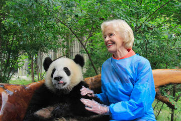 都江堰の成都ジャイアントパンダ繁殖研究基地でのプライベート1日パンダボランテ…
