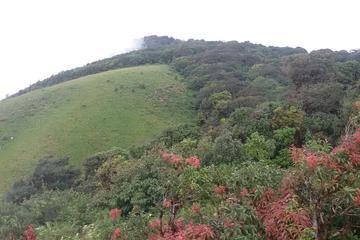 Kiew Mae Pan Natural Trail from Chiang Mai