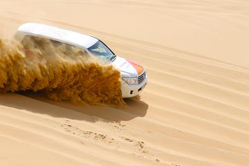 Safári de meio dia no deserto