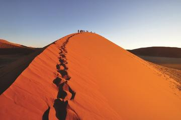 35-Day Overland Cape Town to Zanzibar Tour from Cape Town