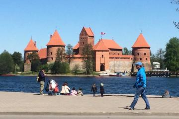 Full-Day Vilnius City Tour and Trakai...