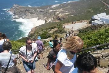 Cape Point and Winelands Full Day Tour from Cape Town