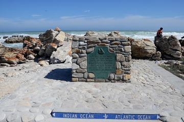 Visite de Cape Agulhas au départ du Cap