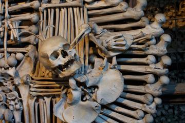 Half-Day Trip to Kutna Hora from...