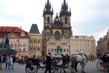 Tour della città di Praga di mezza giornata con crociera sul fiume