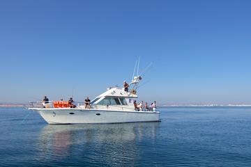 Pesca de dia inteiro em recife saindo de Vilamoura