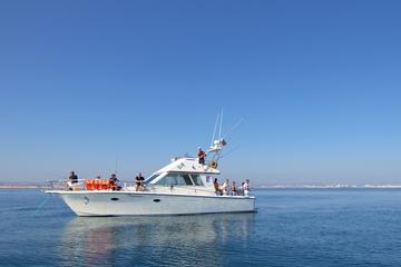 Pesca de meio dia em recife saindo de Vilamoura