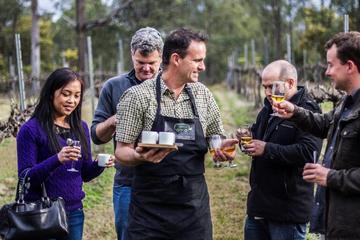 Chef-Led Hunter Valley köstliche Speisen und Wein Tagesausflug von...