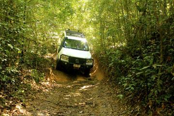 Barron Gorge und Kuranda-Nationalpark– halbtägiges Regenwald- und...
