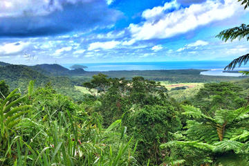 Private Daintree National Park Day...