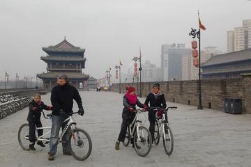 Xi'an City Day Tour