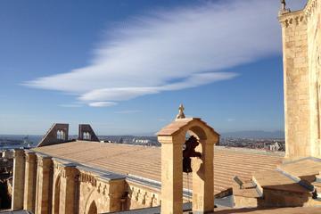 Visite guidée complète de la cathédrale de Tarragone, le cloître et...