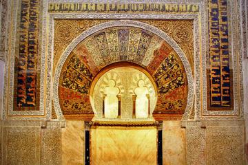 Recorrido de día completo por la ciudad de Córdoba con entrada en la...