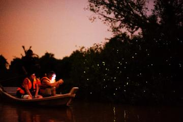 Fireflies and Kuala Selangor Tour Including Dinner