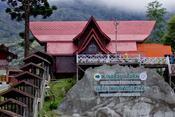 Full-Day Kinabalu Park and Poring Hot...