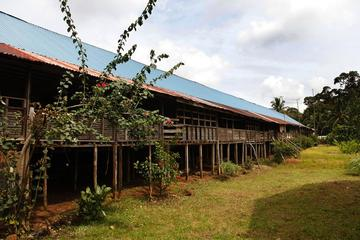 Kuching Bidayuh Longhouse and Empurau Experience
