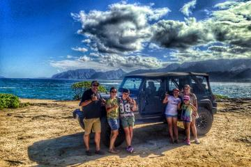 地元の人との冒険: ハーフサークル アイランドツアー