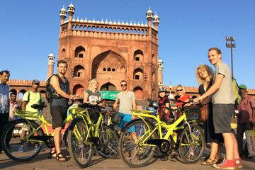 Morning Cycling Tour in Delhi