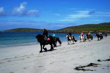 Connemara Beach Horseback Ride Day Tour