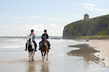 Day Tour: Connemara Wild Atlantic Way Guided Beach Horseback Ride from Galway