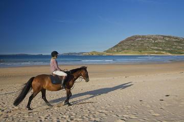Guided Beach Horse Riding Excursion: Wild Atlantic Way Connemara