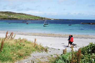 Magical Inishbofin Island on the Connemara Coast from Galway including Lunch
