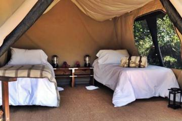 2-Days Glamping in the Pampas