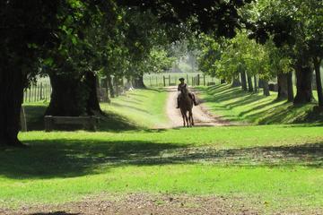 Excursión privada de un día a una Estancia argentina
