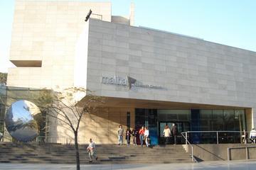 Tour privato d'arte e musei a Buenos Aires