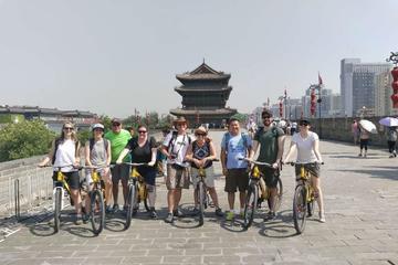Xi'an Classic Day Tour