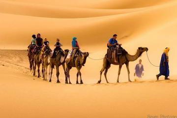 Excursion privée de 3jours dans le désert du Sahara de Marrakech à...