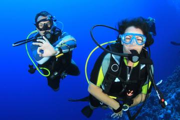 Corso d'immersione in mare aperto PADI per principianti