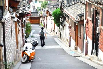 Customizable Private Tour in Seoul and Gyeonggi